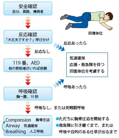 図17.BLS(一次救命処置)の手順 特定保健指導における運動指導の安全対策より