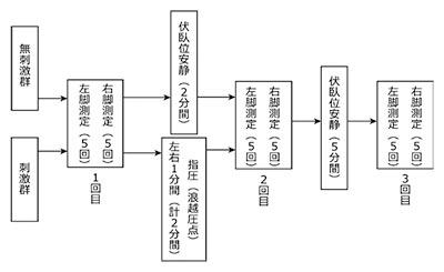図4. 測定手順