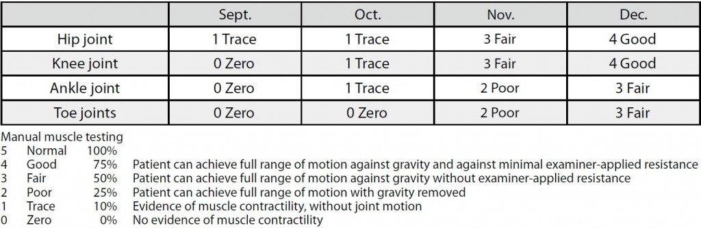 Table 2. Manual muscle testing (MMT) of lower limbs